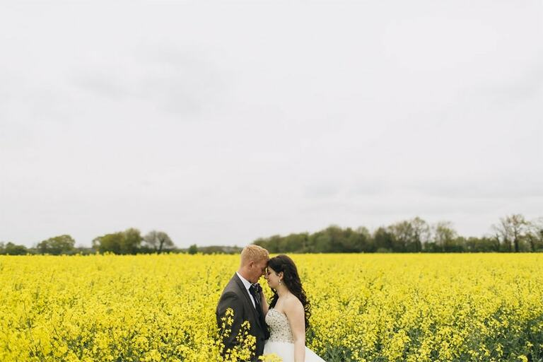 Wedding Photography in a rapeseed field.