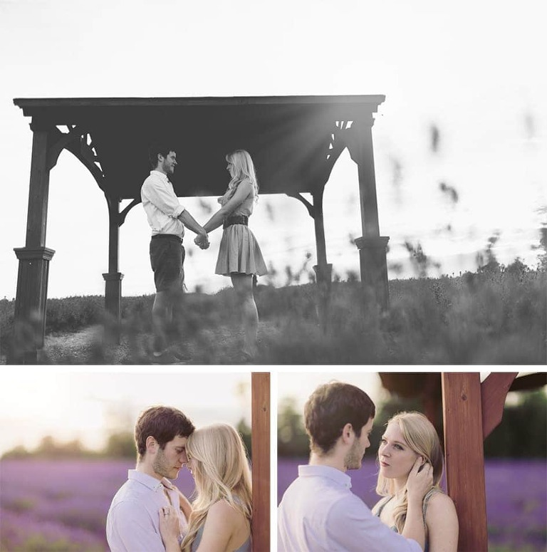 Mayfield Lavender Photography Shoot